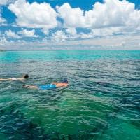 Ayada maldives snorkel