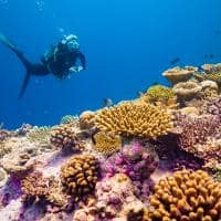 Baglioni maldives mergulho