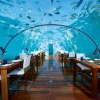 Conrad maldives rangali island ithaa undersea restaurant