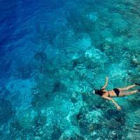 Dusit thani maldives snorkel