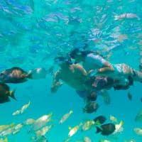 Kagi maldives snorkel