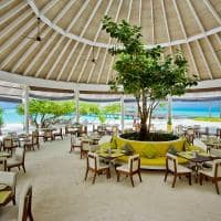 Kandima maldives restaurante zest