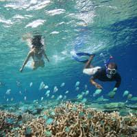 kihavah arrecife