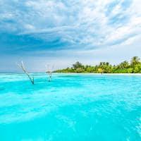 mar maldivas Lux South Ari Atoll