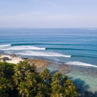 Niyama surf