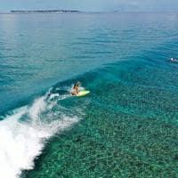 Niyama surfe