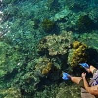Park hyatt maldives hadahaa snorkel