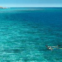 Snorkelling no Vakkaru Maldives