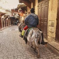 Ruas de Fez - Marrocos.