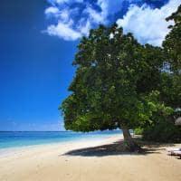 Praia no Maradiva