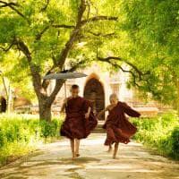 Pacote Myanmar monges