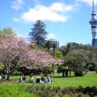 Aproveitando o parque de Auckland