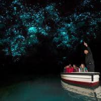 Glowworm Caves em Waitomo