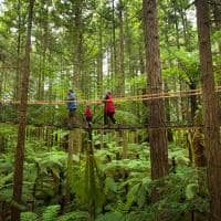 Redwood, Rotorua, Nova Zelândia