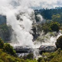 Geiser em Rotorua