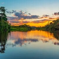 Peru floresta amazonas