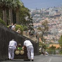 Passeio de trenó em Madeira