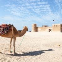 Atração turística Forte Zubarah Al Zubara, Qatar