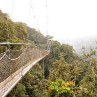 Ruanda ponte