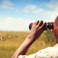 Ruanda ranger