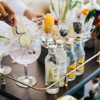 Raffles seychelles gins