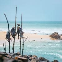 pescadores do sri lanka