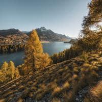 Sils Herbstlandschaft