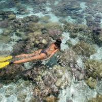 Le tahaa by pearl resorts snorkel