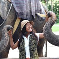 Experiência com elefantes