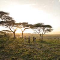 Bebidas ao por-do-sol no Serengeti, Tanzânia