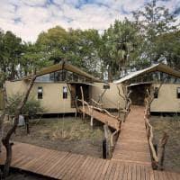 African bush camps thorntree river lodge luxury safari lodge